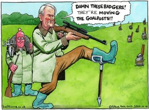 10.10.13: Steve Bell on thge badger cull